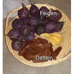 Pappfrüchte